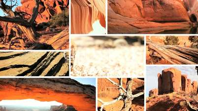 Montage Images of Barren Waterless Environments