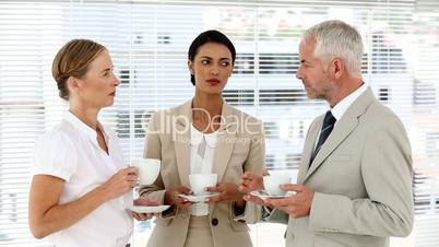 http://image.clipdealer.com/2495155/previews/1--2495155-Business%20team%20chatting%20over%20coffee.jpg