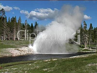 Geysir in Yellowstone (1)