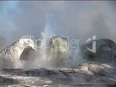 Geysir in Yellowstone (4)